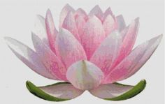 Hey, I found this really awesome Etsy listing at http://www.etsy.com/listing/67776750/lotus-blossom-counted-cross-stitch