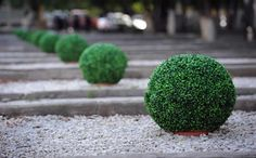 Other Services- Gardening, retaining walls, landscaping