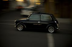 Mini (my car dream is to have a vintage mini and a new custom mini cooper sport in garage - I will drive them both)