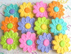 FLOWER GARDEN Decorated Cookie Favors  Flower Cookie by lorisplace, $36.99