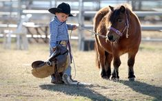 The world's smallest cowboy: Two-year-old saddles up miniature pony 'Maybelline' to compete in the rodeo Cowboy Girl, Little Cowboy, Cowboy Up, Cowboy Humor, Horse Humor, Cowgirl Tuff, Cowboy Western, My Horse, Horse Love