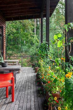 """Arkkitehti rakensi Raaseporiin ekotalon luonnonmateriaaleista: """"Toivon voivani muuttaa ihmisten käsityksiä"""" - Deko Osaka, Entrance, Garden, Party, House, Deco, Entryway, Garten, Home"""