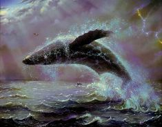 Ocean Thunder by Jeffrey K. Bedrick: The power of a breaching gray whale enhanced by a bolt of lightning and an almost electrical looking aura of splashing water have made this one of my all time most popular images.
