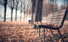 Znalezione obrazy dla zapytania jesienna ulewa obrazy