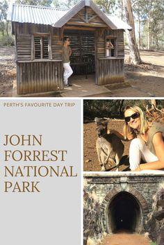 Perth's favourite outing - John Forrest National Park - West Australian Explorer Perth Western Australia, Australia Travel, Kings Park, Day Trips, Old Photos, Night Life, Travel Inspiration, National Parks, Explore