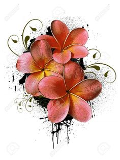 Stock photo - grunge color flower poster background with space plumeria flower tattoos, hawaiian flower