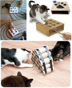 Giochi per gatti: 13 idee per realizzarli con il fai-da-te - Homemade Cat Toys, Diy Cat Toys, Pet Toys, Kitty Games, Cat Games, Cat Room, Cat Crafts, Here Kitty Kitty, Diy Stuffed Animals