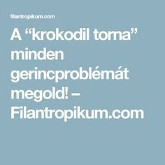 "A ""krokodil torna"" minden gerincproblémát megold! Thigh Exercises, Excercise, Workout, Fitness, Sport, Yoga, Crocodile, Ejercicio, Exercise"