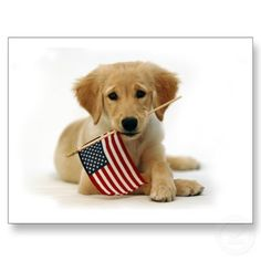 The 4th of July is next week! Make your reservation as soon as possible! We are almost full!