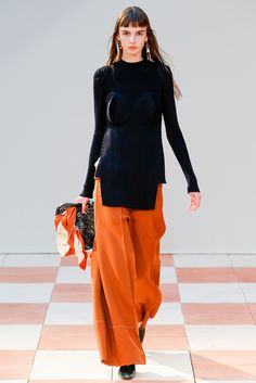 http://www.style.com/slideshows/fashion-shows/fall-2015-ready-to-wear/celine/collection/36