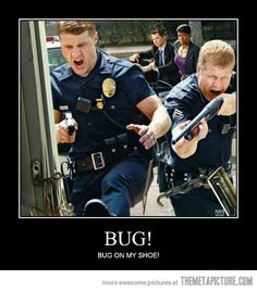Funny Police Pictures Funny Police Officers Screaming Law Enforcement Stoner Humor