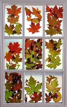 Fall Leaf Stained Glass - Things to Make and Do, Crafts and Activities for Kids - The Crafty Crow
