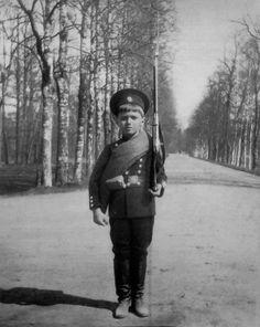 Tsarevich Alexei Nicholaevich.