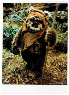 Can I please just have an Ewok as a pet?  I don't see anything wrong with it!