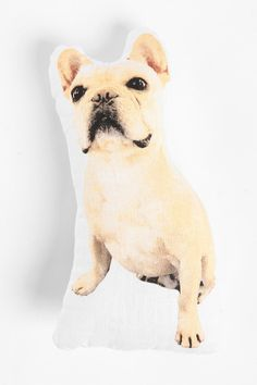 Albert The French Bulldog Pillow is too adorable, might change his name to Louis though #UrbanOutfitters #PinARoomWinARoom