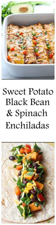 Sweet Potato, Black Bean & Spinach Enchiladas- super healthy and so delicious! (vegetarian)
