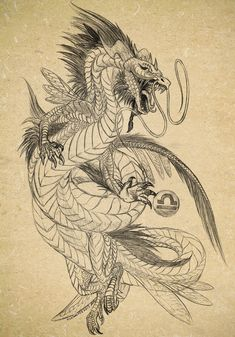 Sketch of dragon tattoo by Archspirigvit on DeviantArt