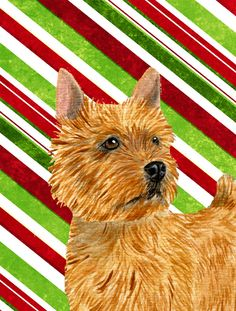 Norwich Terrier Candy Cane Holiday Christmas House Vertical Flag