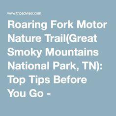 trip advisor advice - Roaring Fork Motor Nature Trail(Great Smoky Mountains National Park, TN): Top Tips Before You Go - TripAdvisor