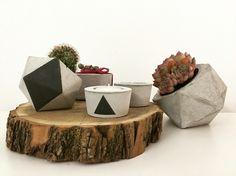 Concrete vases candel & cactus by a.j