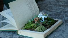 a small fairy garden inside a hollowed out book.....great idea...hmm which book title should I use....