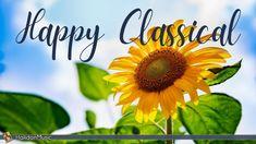 Bing Video, Music Store, Music Albums, Classical Music, Music Videos, The Creator, Happy, Youtube, Ser Feliz