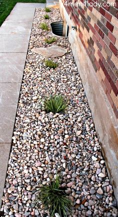 We have rocks around our house due to drainage issues - might have to add some plants like these!: