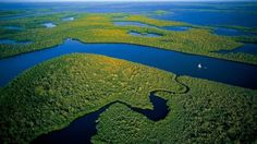 Everglades National Park Everglades National Park: Things To Do And See Everglades National Park. There are many things to do and see in Southwest Florida, and Everglades National Park is one of th… Parc National, National Parks, Blog New York, Institut Pasteur, Voyage Usa, Everglades National Park, Florida Everglades, Florida Usa, Turismo