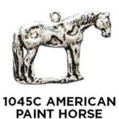 American Paint Horse Charm