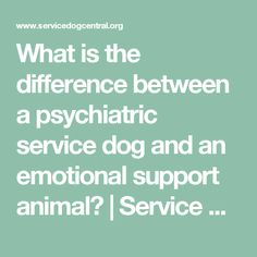What is the difference between a psychiatric service dog and an emotional support animal? | Service Dog Central