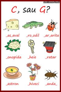 Learn Languages, Kids Education, Homeschool, Classroom, Learning, Logos, Early Education, Class Room, Homeschooling