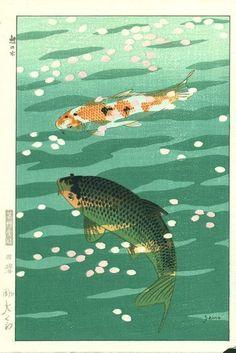 Shiro Kasamatsu - Carpes Koi - 1957