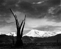 1948 Sunrise, Mount Tom, Sierra Nevada, California by Ansel Adams 84.90.604