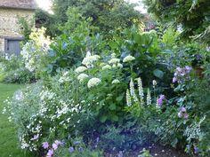 Sharon Santoni's garden in Normandy