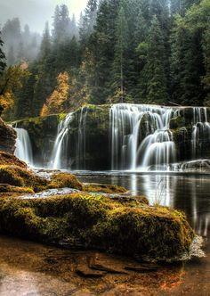 Your Tuesday cubicle escape, brought to you by the blissfully serene Pacific Northwest.