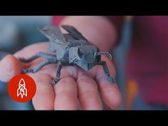 A Fold Apart: Origamist Robert Lang's Incredible Paper Creations - YouTube  #Origami #Math #Physics