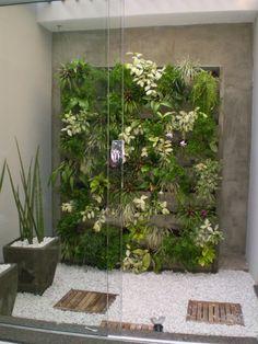 wall green jardim vertical - Pesquisa do Google