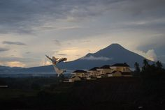 northern sulawesi | Manado , a Christian enclave in Northern Celebes (Sulawesi)