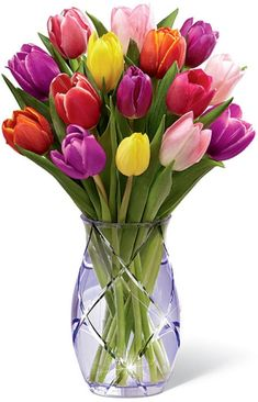 You put tulips in a vase and they'll go where they wish to. If your tulips feel a little stiff don't worry, they'll begin to relax in only a couple of hours! Tulips In Vase, Tulips Flowers, Fresh Flowers, Spring Flowers, Planting Flowers, Beautiful Flowers, Purple Tulips, Purple Glass, Tulip Bouquet