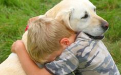 Los dueños de mascotas deben poner atención a las demostraciones exageradas de cariño hacia sus animales. url