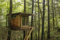 1. Flying Squirrel Tree Cabin, Red River Gorge Cabin Company, Stanton