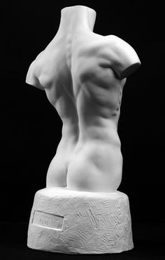 Male Torso Art Reference Cast by Philippe Faraut http://philippefaraut.com/store/catalog/product/gallery/image/81/id/43/