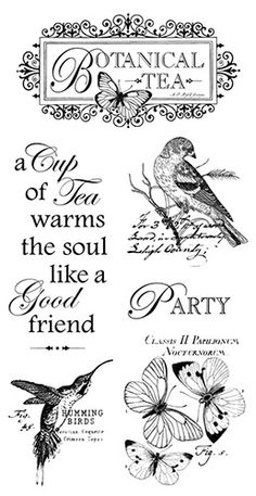 Graphic 45 - Hampton Art - Botanical Tea Collection - Cling Mounted Rubber Stamps - One