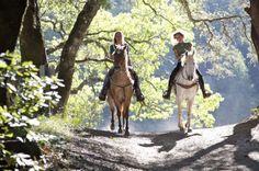 【代行予約】アッピア街道を歩く!乗馬体験ツアーのツアーのイチオシポイント画像
