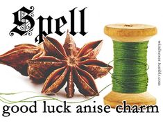 """windvexer: """"This is a very cute and simple charm! I'll bet you could set it in resin to reduce the chance it will be crushed. Wear it as a necklace, or as a phone charm, or hang it in an area. Luck Spells, Magic Spells, Wiccan, Witchcraft, Pagan, Magick, Money Spells That Work, Charmed Spells, Lucky Colour"""