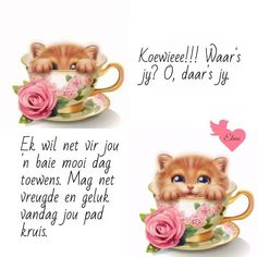 Evening Greetings, Good Morning Greetings, Good Morning Wishes, Lekker Dag, Happy Morning Quotes, Afrikaanse Quotes, Goeie More, Happy Anniversary, Friendship Quotes