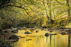 Remanso en el arroyo Bayones, Ucieda  #Cantabria #Spain