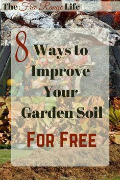 Simple Ways to Improve Your Garden Soil for Free Gardening doesn't have to be expensive! 8 Ways to Improve Your Garden Soil- for FREE!Gardening doesn't have to be expensive! 8 Ways to Improve Your Garden Soil- for FREE! Compost Soil, Composting, Soil Improvement, Organic Gardening Tips, Vegetable Gardening, Desert Gardening, Organic Soil, Gardening Hacks, Garden Soil