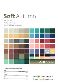 Colors for a Soft Autumn Man www.inventyourimage.com Copyright © 2011 No part of these materials may be reproduced, distributed or transmitted in any form or by any means unless prior written permission is given by Lisa K. Ford- CEO and Founder of Invent Your Image, LLC