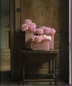 Beautiful pink flowers in a vintage setting.
